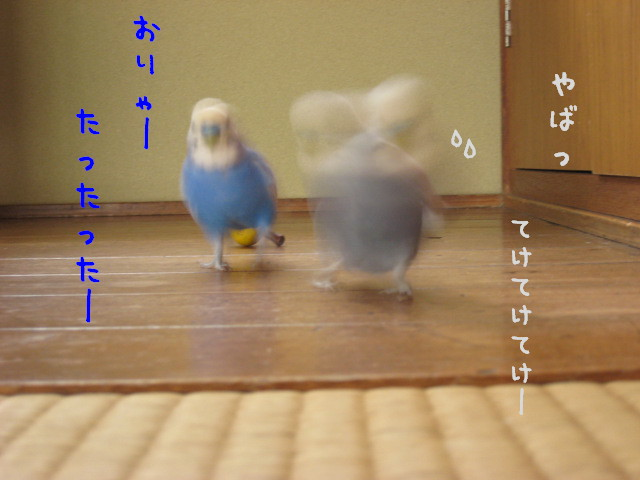 2007100201.jpg