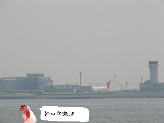 神戸クルーズ15.jpg