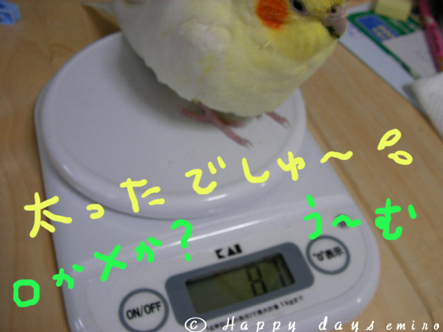 ○か×か?