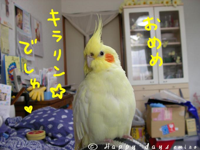 オメメきらりん☆
