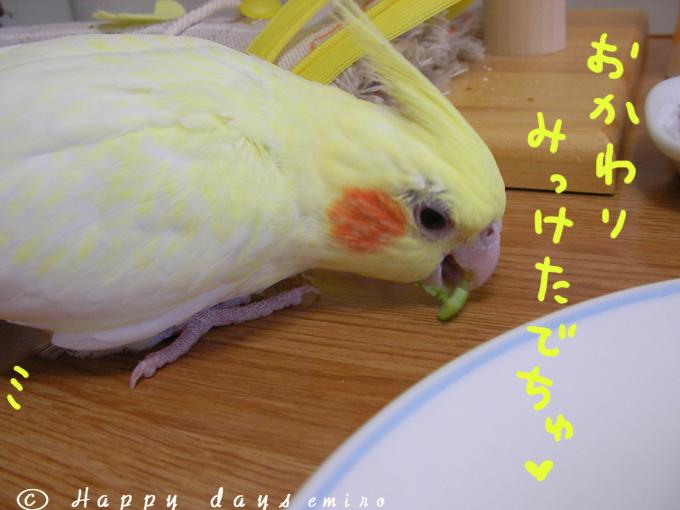 おかわり〜^^