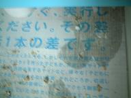 070628新聞紙.jpg