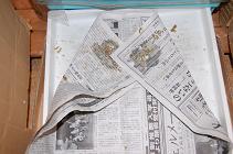 081023新聞紙.jpg