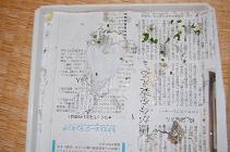 090214敷き紙.jpg
