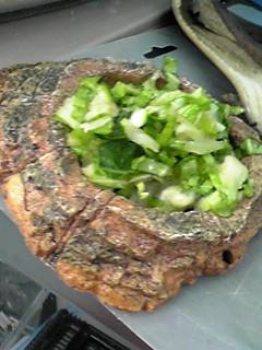 ホシガメみじん野菜