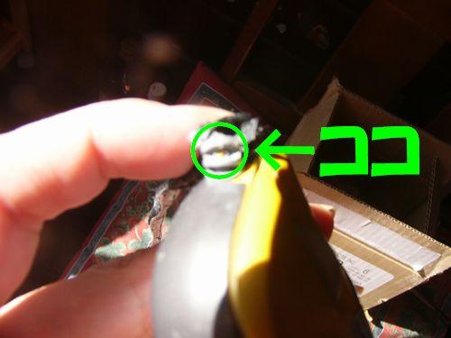 070312マウス.jpg