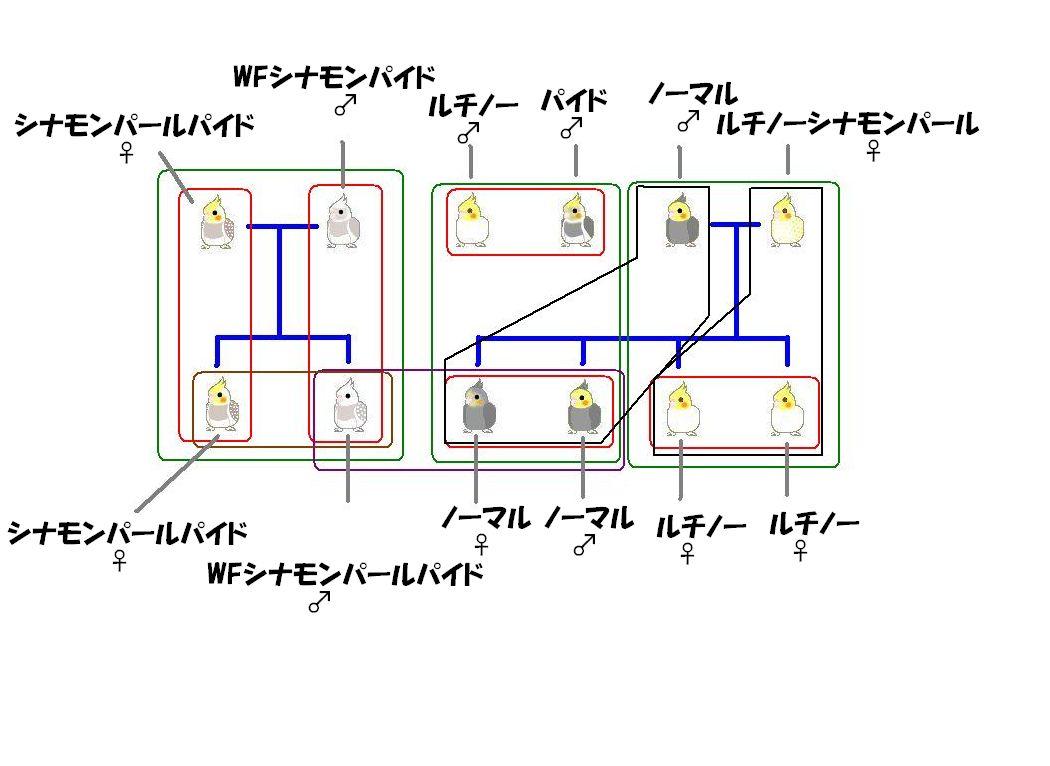 070321関係図.jpg