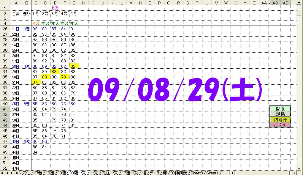 090829体重表.jpg