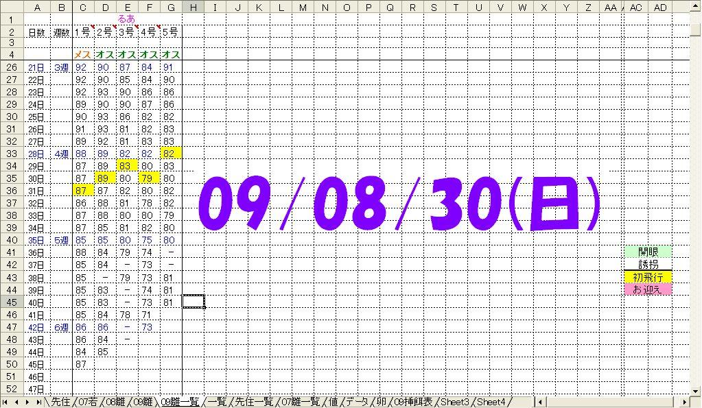 080930体重表.jpg