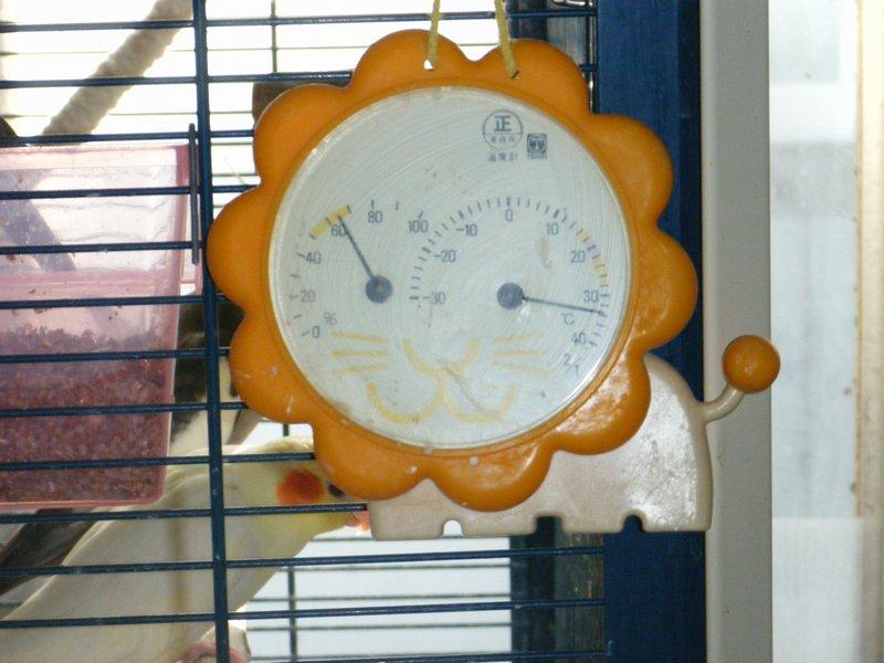 100704温度計.jpg