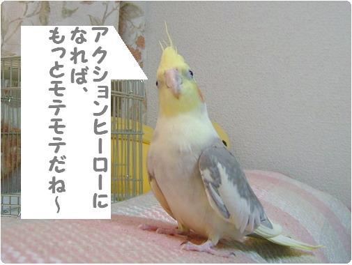 1173850599819872.jpg